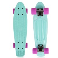 Deluxe cruiser skateboard mint green