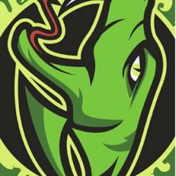 Riedlentė Poison Black/Green